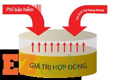 an-phuc-hung-thinh